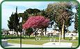 Plaza 25 De Mayo Cruz Del Eje