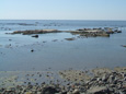 Reserva Laguna Mar Chiquita Y Bañados Del Río Dulce